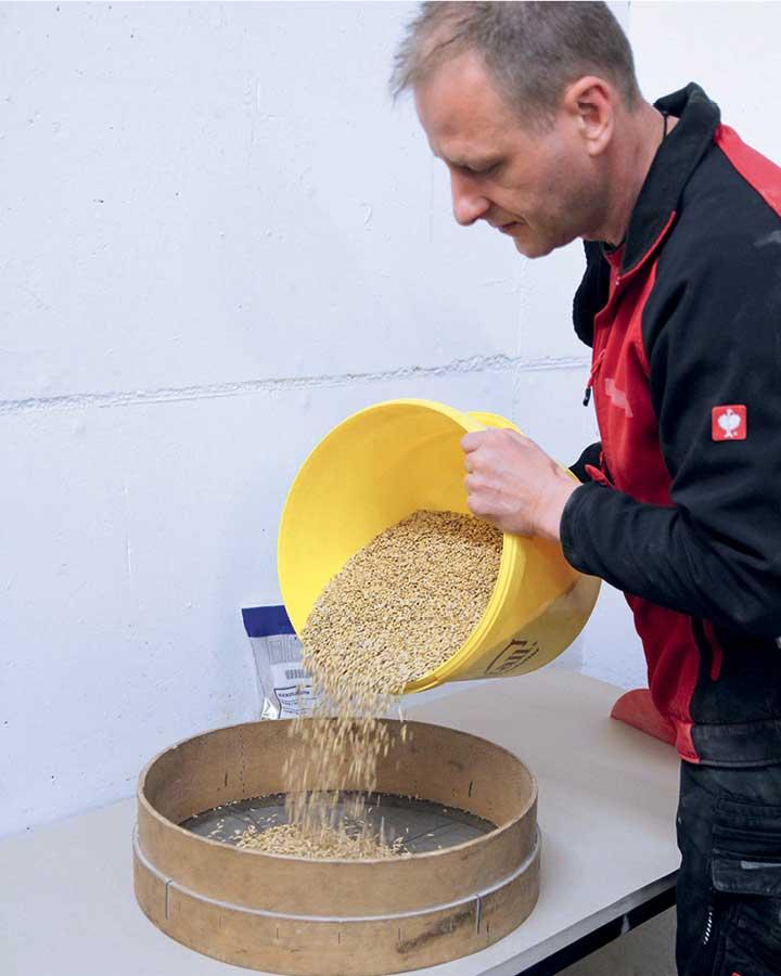 Ein Kollege siebt eine Stichprobe von Getreide für die Pellets aus.