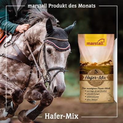 Hafer-Mix