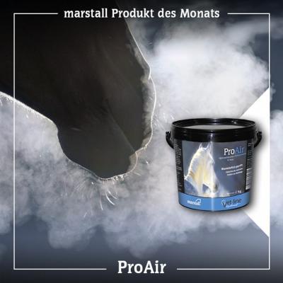 ProAir