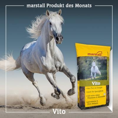 marstall Vito