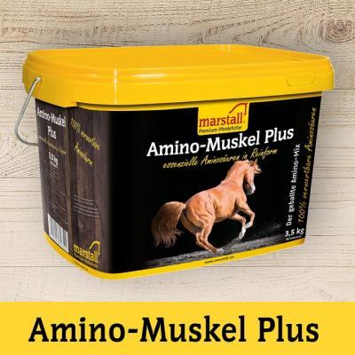Amino-Muskel Plus