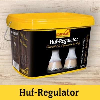 Huf-Regulator