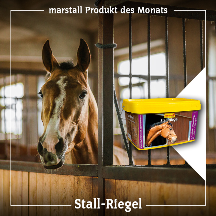 marstall Stall-Riegel