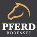Pferd Bodensee